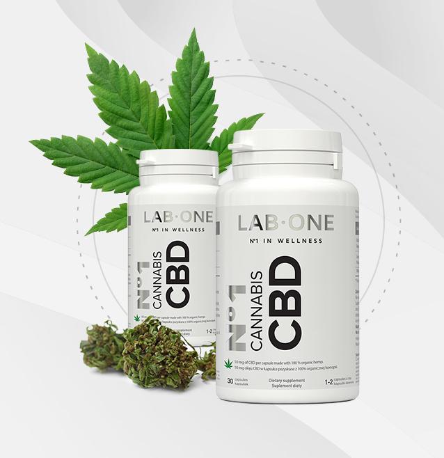 No1 Cannabis CBD - 2020 - gdzie kupić, skład, ceny?