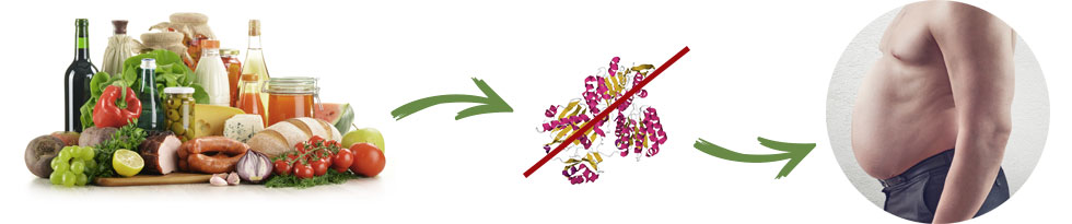 Stosowanie i skład. Co to jest Garcinia SLM?